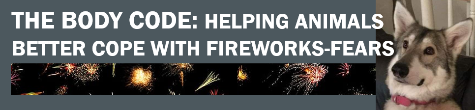 Using The Body Code healing to help animals cope better with fireworks fear – Bonfire Night, Diwali, New Year! Banner